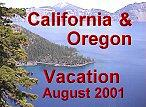 Vacation-Icon.jpg (8384 bytes)